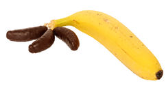 Mixed bunch of chocolate bananas and real fruit Royalty Free Stock Photos
