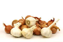 Mixed bunch of shallots and garlic bulbs Stock Photos