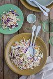Mixed cabbage slaw salad. Plate of Mixed red and white cabbage slaw salad Stock Image