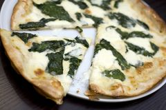 Mixed cheese and spinach pizza stock photos