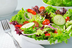 Mixed Chef Salad. A mixed chef's salad with lettuce, cherry tomatoes, red onion, and english cucumber Royalty Free Stock Image