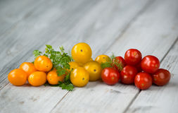 Mixed cherry tomatoes orange, yellow and red with fresh herbs on a wooden background Royalty Free Stock Photo