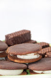 The mixed chocolate biscuits arranged on a plate Stock Images