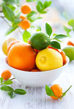 Mixed citrus fruit stock photo