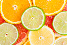 Mixed citrus fruit Royalty Free Stock Image