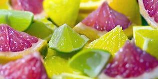 Mixed citrus fruit. Pieces of fresh citrus fruit Royalty Free Stock Image