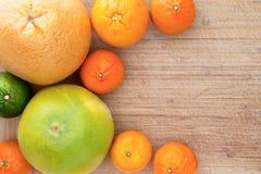 Mixed citrus fruit border Stock Photo