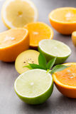 Mixed citrus fruit lemons, orange, kiwi, limes on a gray backgro Royalty Free Stock Images