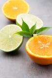 Mixed citrus fruit lemons, orange, kiwi, limes on a gray backgro Royalty Free Stock Images