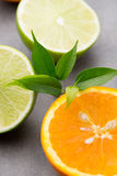 Mixed citrus fruit lemons, orange, kiwi, limes on a gray backgro Stock Image