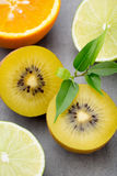 Mixed citrus fruit lemons, orange, kiwi, limes on a gray backgro Stock Images