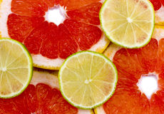Mixed citrus fruit. Lime and grapefruit Royalty Free Stock Photos