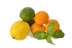 Mixed citrus fruits with mint isolated Royalty Free Stock Photography
