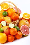 Mixed citrus Stock Photo