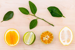 Mixed citruses fruit oranges, lemon and lime on wooden backgroun Stock Photography