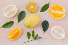 Mixed citruses fruit oranges Stock Photography