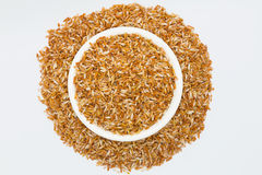 Mixed coarse rice Stock Photo