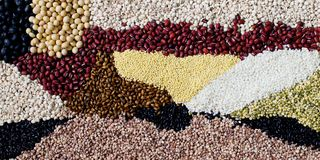Mixed colorful grains Background image. Various kinds of grains, colorful image Royalty Free Stock Images