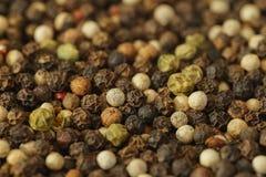 Mixed Colour Peppercorns Close-up. A close-up of Mixed Colour Peppercorns Close-up Stock Photo