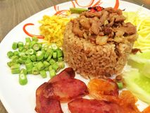 Mixed cooked rice. With shrimp paste sauce royalty free stock photos