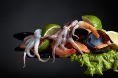 Mixed delicious seafood with salad and lime slices . stock photos
