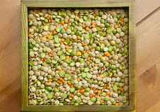 Mixed dried beans. Multicolored mixed dried lentils in the box Stock Image