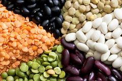 Mixed dried beans. Multicolored mixed dried beans in the box Stock Images