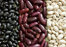 Mixed dried beans. Multicolored mixed dried beans in the box Royalty Free Stock Image