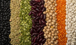 Mixed dried beans Royalty Free Stock Images