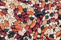 Mixed dried beans Stock Photography
