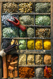 Mixed dried herbs and spices Royalty Free Stock Image