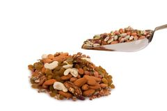 Mixed dry fruits Stock Images
