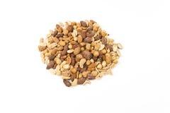 Mixed edible Nut Kernels Royalty Free Stock Image