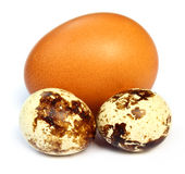 Mixed eggs Royalty Free Stock Photos