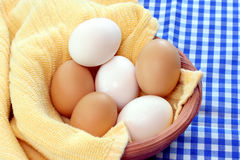Mixed Eggs in Clay Bown Stock Photos