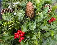 Mixed evergreen arrangement with pine cones and holly Royalty Free Stock Photography