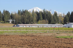 Mixed Farming Royalty Free Stock Photos