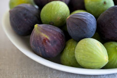 Mixed figs. Greens and purple Stock Image