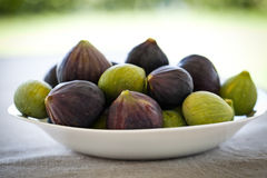 Mixed figs. Greens and purple Royalty Free Stock Photo