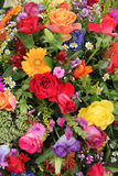 Flower arrangement in bright colors Stock Images