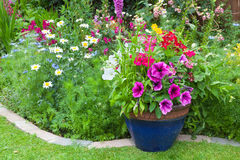 Mixed flower border with potted plants Royalty Free Stock Images