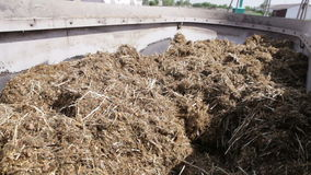 Mixed fodder is produced for cows stock video footage
