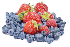 Mixed Fresh Berries Stock Photography