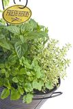 Mixed Fresh Herbs in a Basket Royalty Free Stock Photos