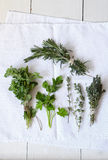 Mixed fresh herbs Royalty Free Stock Photography