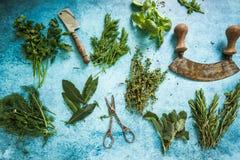 Mixed fresh herbs and vintage mezzaluna Stock Photography