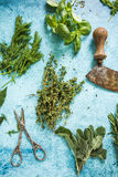 Mixed fresh herbs and vintage mezzaluna Stock Images