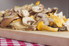 Mixed fresh mushrooms Stock Photo
