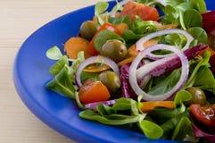Mixed fresh salad Stock Photography
