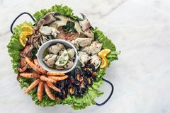 Mixed fresh seafood selection gourmet set platter meal on table. Mixed fresh portuguese seafood selection gourmet set platter meal on table Stock Image